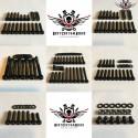 Harley Motor Schrauben Kit Schwarz V-Rod® Night Rod Special® Muscle® 2002+