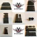 Harley Engine Screws Kit Black Sportster® 2004-2006